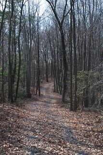 wildcat ridge path 24   by aaron wolpert