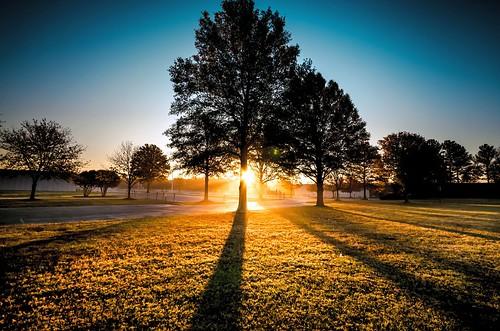 morning trees usa sunlight coffee field silhouette sunrise photography golden virginia frost shadows unitedstatesofamerica richmond biscuit va daybreak rva skynoir