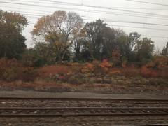 金, 2012-10-26 10:17 - Amtrak NY-Philadelphia間の紅葉