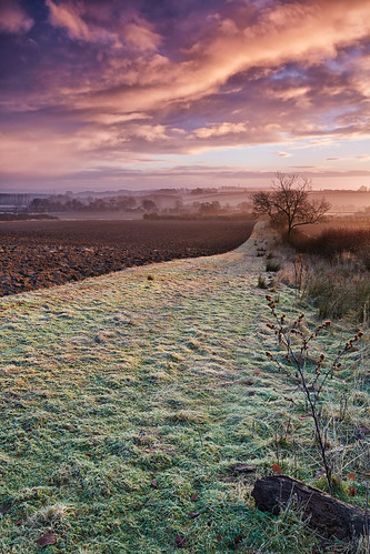 uk cloud cold sunrise landscape dawn countryside scenery frost farming earlymorning fields colourful agriculture malton northyorkshire a64 goldenhill canon1740f4 riverderwent huttonsambo canon5dmk3 markmullenphotography