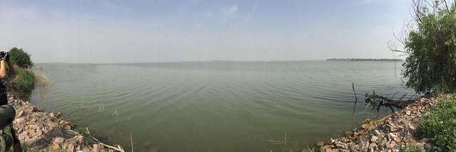 EAAF085 Hengshui Lake National Nature Reserve