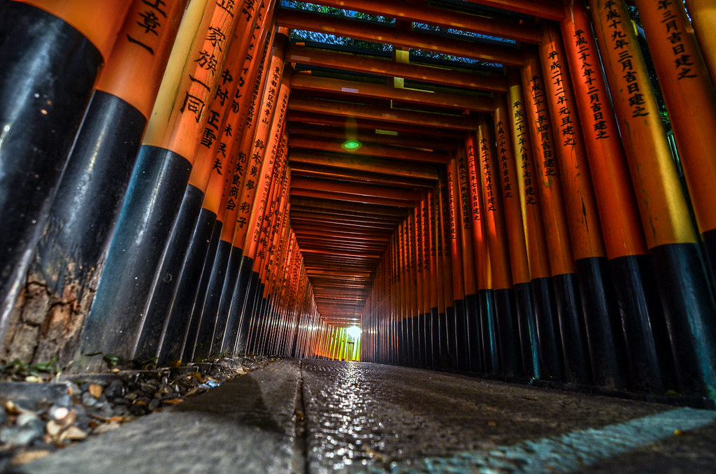 Fushimi Inari curve night