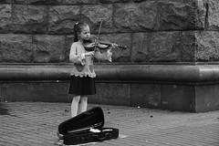 A spring violin / Весенняя скрипка
