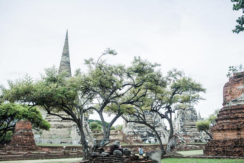 THAI2016_-50