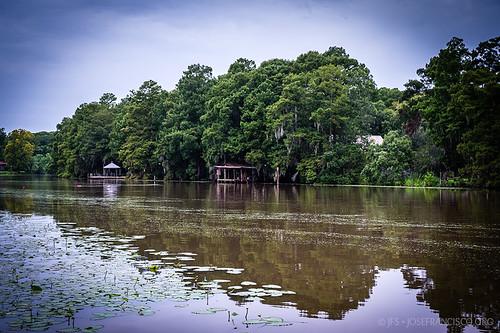 usa río river us nikon louisiana pantano swamp nikkor wetland d4 humedal maurepas amiteriver livingstonparish 2470mmf28g headofisland 201207216308