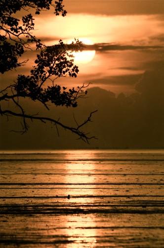 sunset paradise johor muar westmalaysia