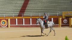 vídeo 06 Exhibición de Doma Vaquera y alta escuela en Fuengirola octubre 2012