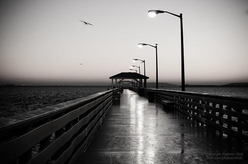 ocean morning bw seascape sunrise landscape 50mm pier blackwhite nikon tampabay ballastpoint