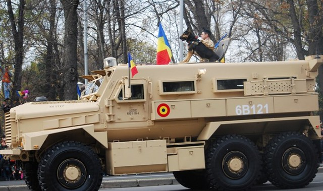 1st December, the National Day of Romania: Military dog Max – a real hero - 2