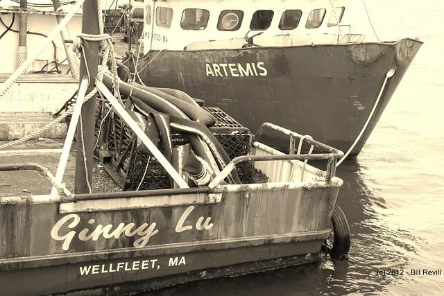 Wellfleet Harbor fishing boats