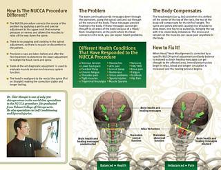 Rennaisance NUCCA Presentation | by MedicalMultimedia