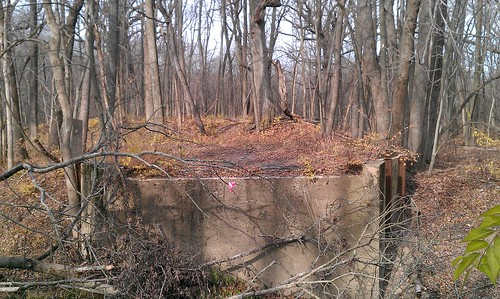 bridge urban creek forest other illinois woods side gap plum haunted mans crete area ax legend closeupshot