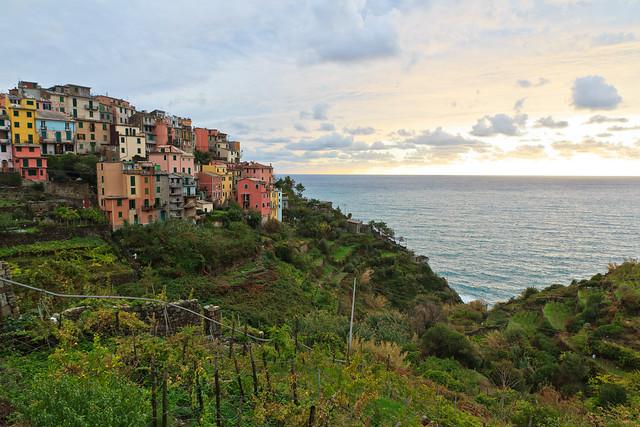The Village, the Vineyards and the Sea (Corniglia in Cinque Terre, Italy)