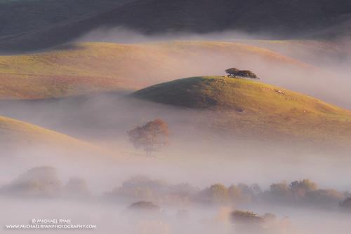 fog sunrise photography michael ryan hill sonoma hills wilson petaluma michaelryanphotography