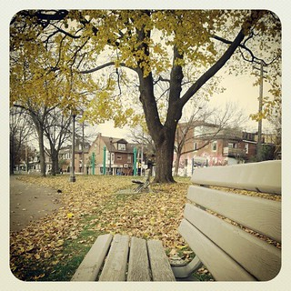 Just enjoying a cappuccino in Trinity Bellwoods, gorgeous morning