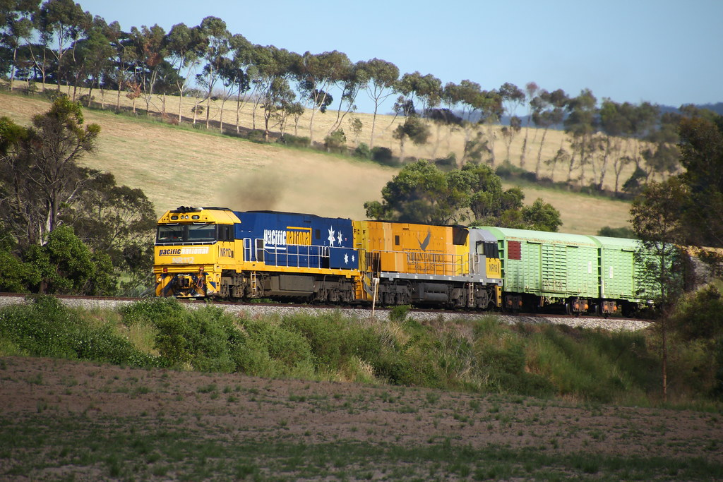 IMG_1008 by Todd Hutchison