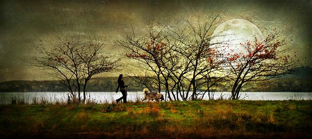 walkin' the dog . . .