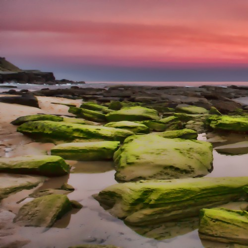 sunset sky seascape beach moss rocks
