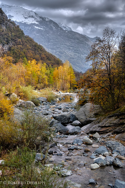 autunno in val Pellice - 5