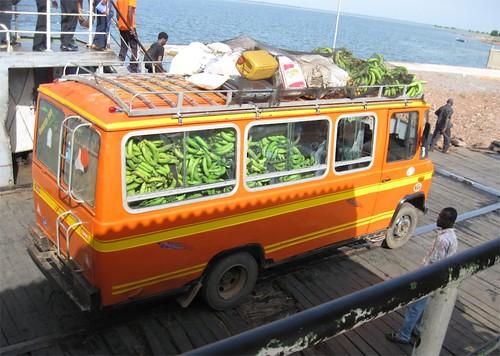 Bananas on board | by Eileen Delhi