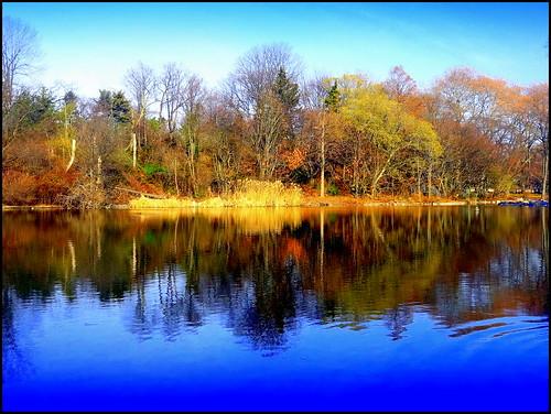 lake newyork brooklyn image prospectpark dmitriyfomenko fall22012