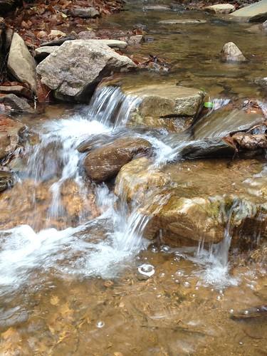 creek dark hollow stinking