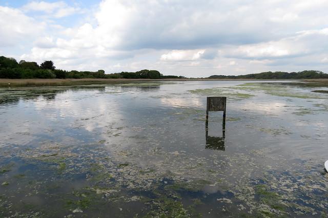 The Yar Estuary at School Green