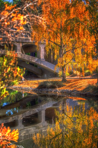 bridge autumn reflection tree fall nature water northerncalifornia arboretum ucdavis a57 sonyalpha