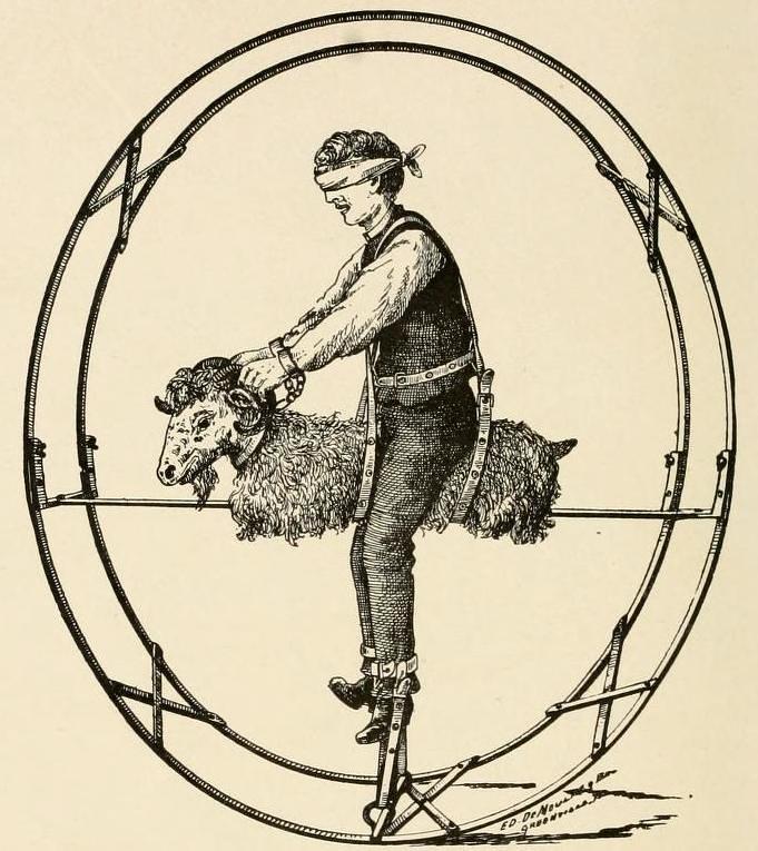The Improved Ferris Wheel Goat