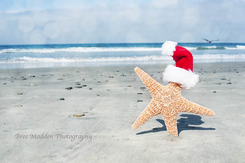 Christmas At The Beach | by MaddenPhotography