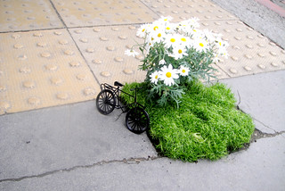An ode to my stolen bike ... | by thepotholegardener