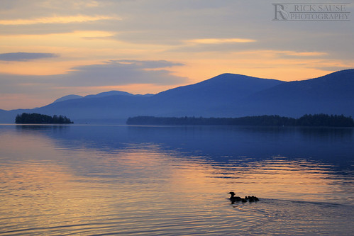 blue sunset sky orange lake seascape reflection animals sunrise islands ripple ducks lakegeorge ripples