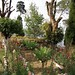 jardin Risheehat