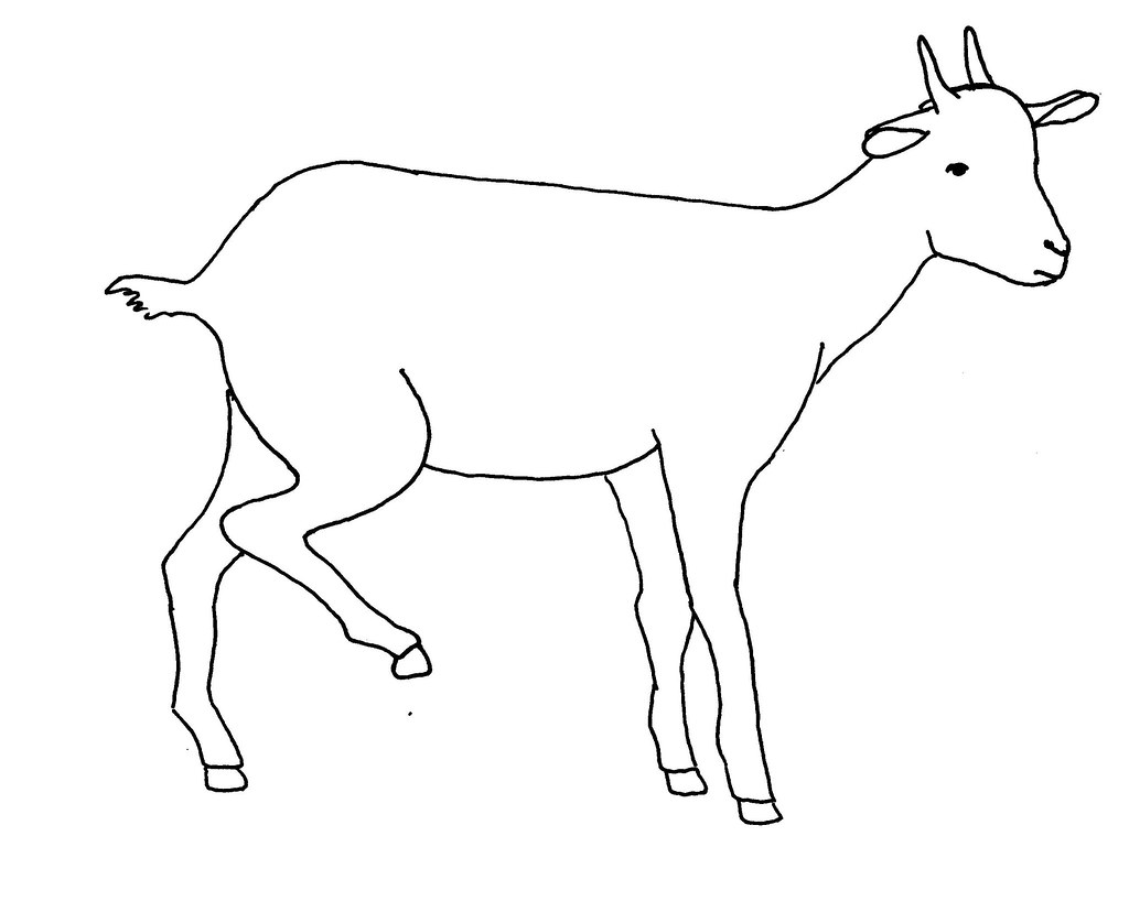 Line drawing of a lame goat | Used as extension and training