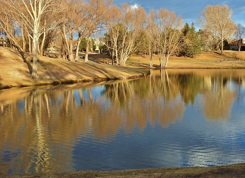 briargate reflectionpond briargatecoloradosprings janeelizabethlazarz walkingcolorado nikon p900 nikonp900 coloradosprings colorado janelazarz breathtakingcolorado sunset goldensunset water blue pond reflectionpondatbriargate reflection reflectioninwater golden goldenglow goldenlight treesreflectioninwater trees