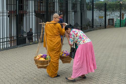 Buddhist Nun   by seghal1