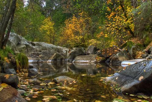 california autumn foothills fall water creek canon sigma nevadacity deercreek nevadacounty sierranevadafoothills canoneos50d sigma1770mmf2845dcmacrolens zeikoscpl