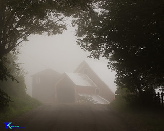 Foggy Barn | by Tim_NEK