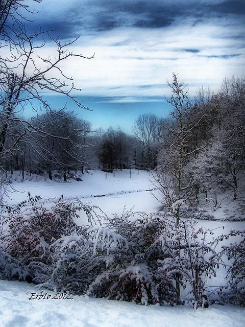 snowylandscape