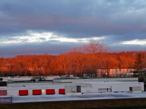 sunrise massachusetts photoaday brightcolors highlight weeklytheme westspringfield burningtrees wintersummer ahobblingaday again5minutesofcolor