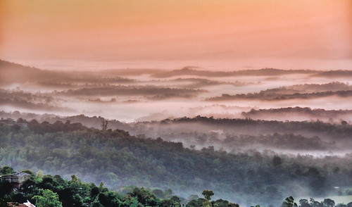 morning beautiful fog sunrise landscape