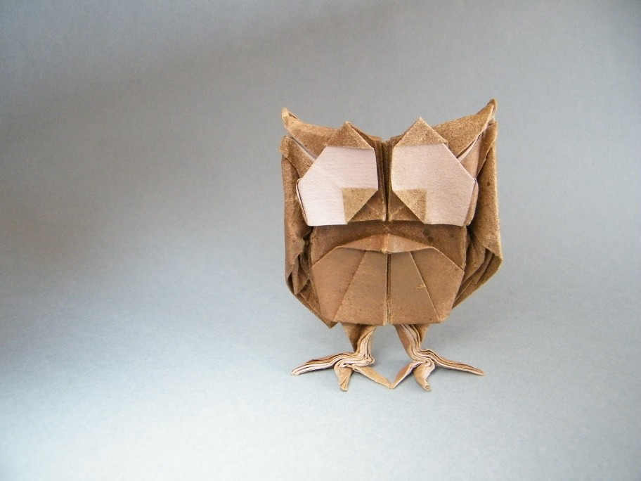 Crazy Owl - Sébastien Limet (AKA Sebl)