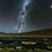 Bofedal in Atacama Desert by vglima1975