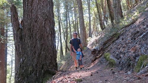 #mypubliclandsroadtrip 2016: Get outdoors Baby, King Range National Conservation Area