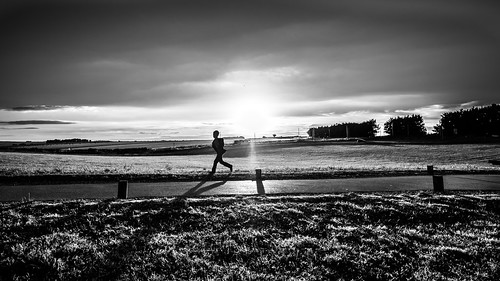 grass natural england calm print street running trees contrast child outside uk photography sky wallart geotagged white fineart tranquil prints unitedkingdom sunset backlight candid european streetphotography figure outdoor blackandwhite bw countryside clouds tree sun photo photograph peaceful beautiful nature cloud monochrome black park horizontal europe outdoors field onsale