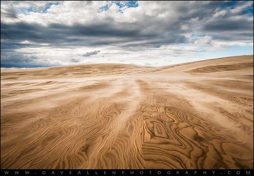 beach coast nc sand nikon dunes dune northcarolina ridge hatteras sandstorm jockeys outerbanks minimalist sanddunes obx daveallen jockeysridge carolinas d700 nikond700 mygearandme mygearandmepremium mygearandmebronze mygearandmesilver mygearandmegold mygearandmeplatinum mygearandmediamond
