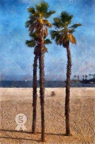 ocean summer beach bike bicycle sand warm palmtree carefree textured longbeachcalifornia alamitosbeach celestem awardtree saariysqualitypictures palmyrahpalm galleryoffantasticshots celestemookherjee vigilantphotographersunite vpu2 vpu3 vpu4 vpu5 vpu6 vpu7 vpu8 vpu9 vpu10