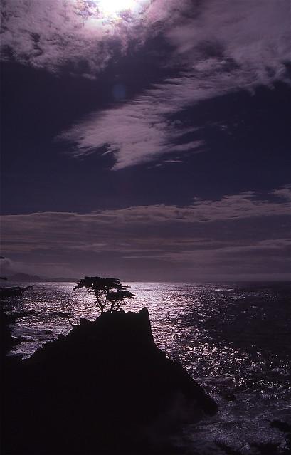 Seven Mile Drive Monterey - California USA 1989 (Time Travel) Ektachrome 64 scanned
