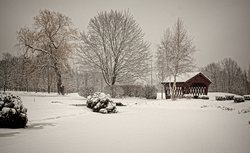 winter snow nature landscape scenery newengland newhampshire candia golfcoures