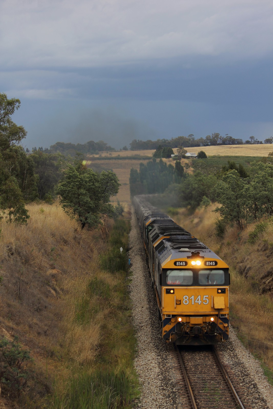 Pacific National - 8938 by Thomas Worley
